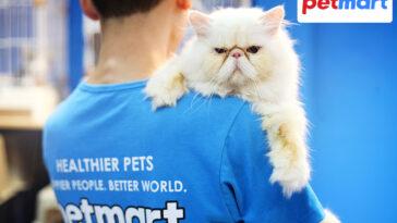 Công dụng, thành phần thuốc nhỏ gáy trị rận cho mèo là gì?
